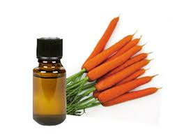 Carrot Seed Oil For Skin
